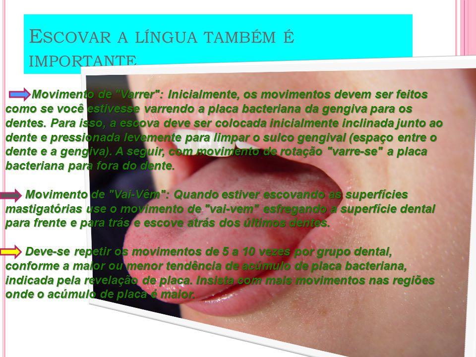 T ÉCNICA PARA ESCOVAÇÃO Dentes Superiores Inicie pelos últimos dentes de cima, do lado direito e pela superfície interna seguindo até o lado esquerdo (movimento de varrer ).
