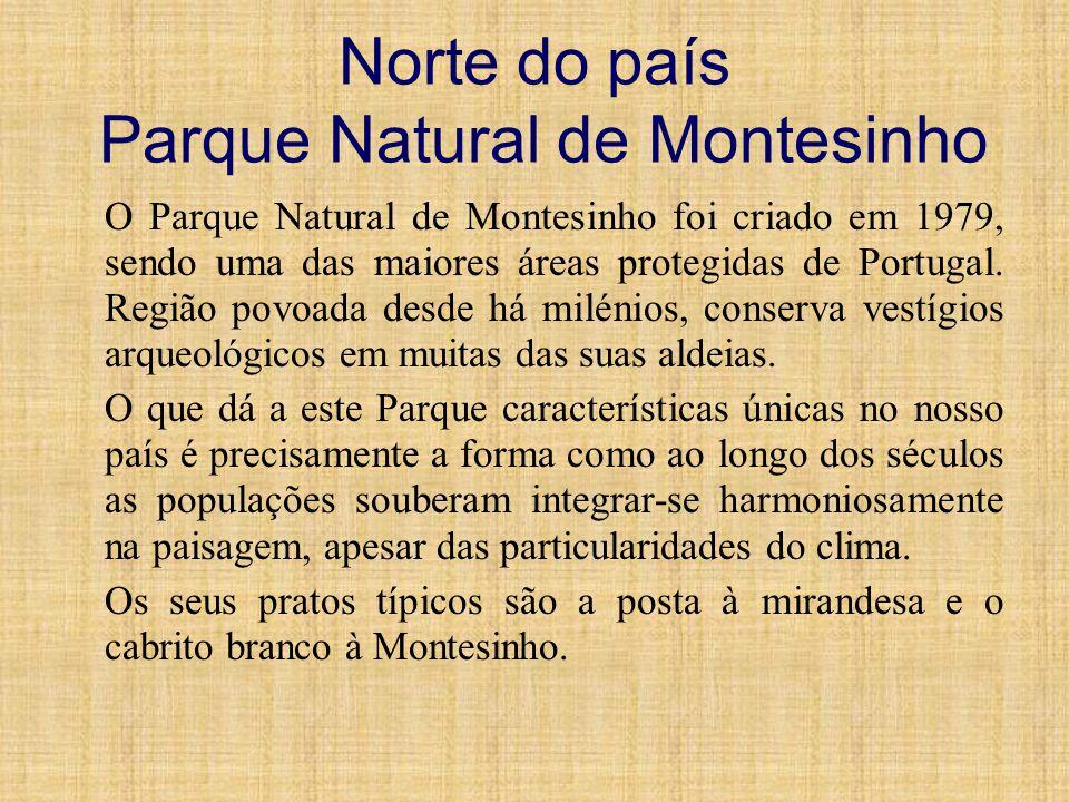 Norte do país Parque Natural de Montesinho O Parque Natural de Montesinho foi criado em 1979, sendo uma das maiores áreas protegidas de Portugal. Regi