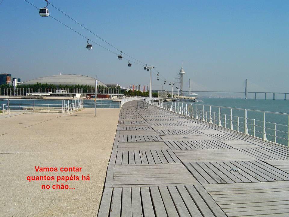 Poderá visitar alguns dos Pavilhões que se mantêm abertos, como o Oceanário, o Pavilhão do Conhecimento ou o Teatro Camões.