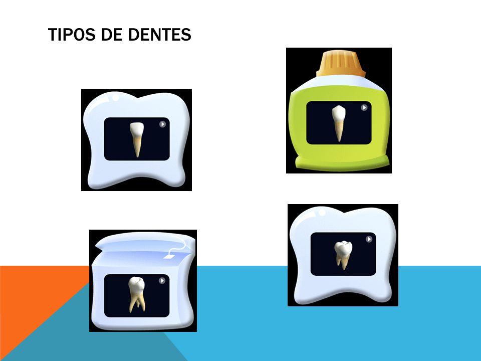 Escova Creme Dental Fio Dental Local Tempo HIGIENE BUCAL