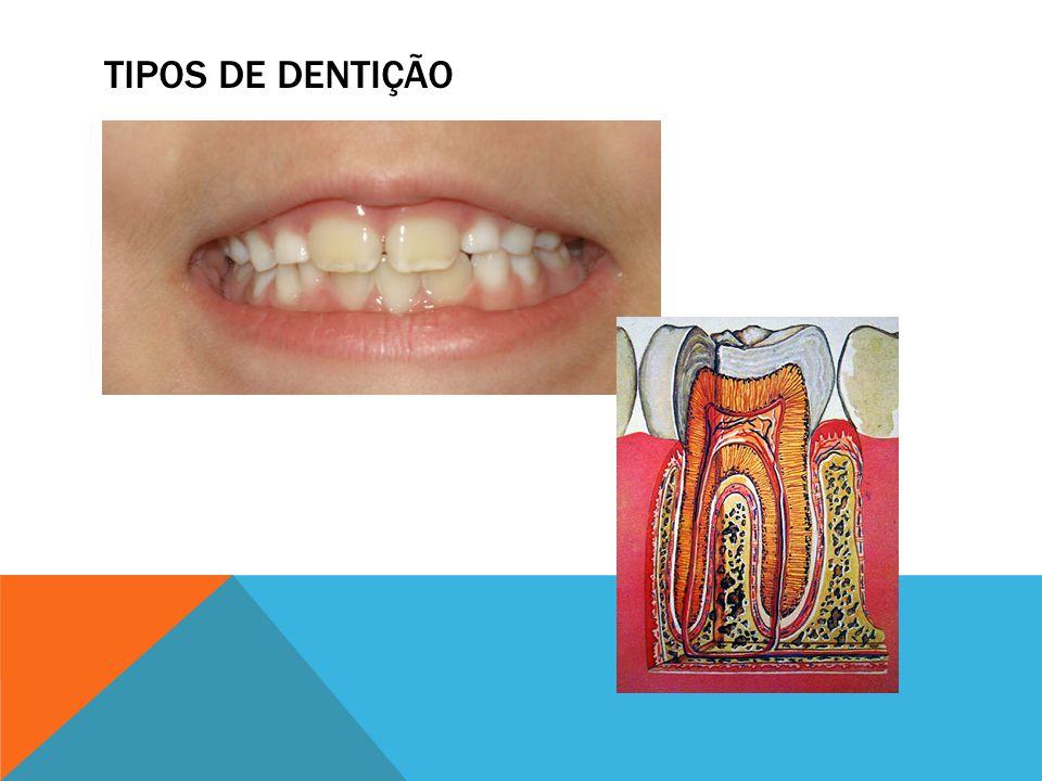 HIGIENE BUCAL Fio Dental