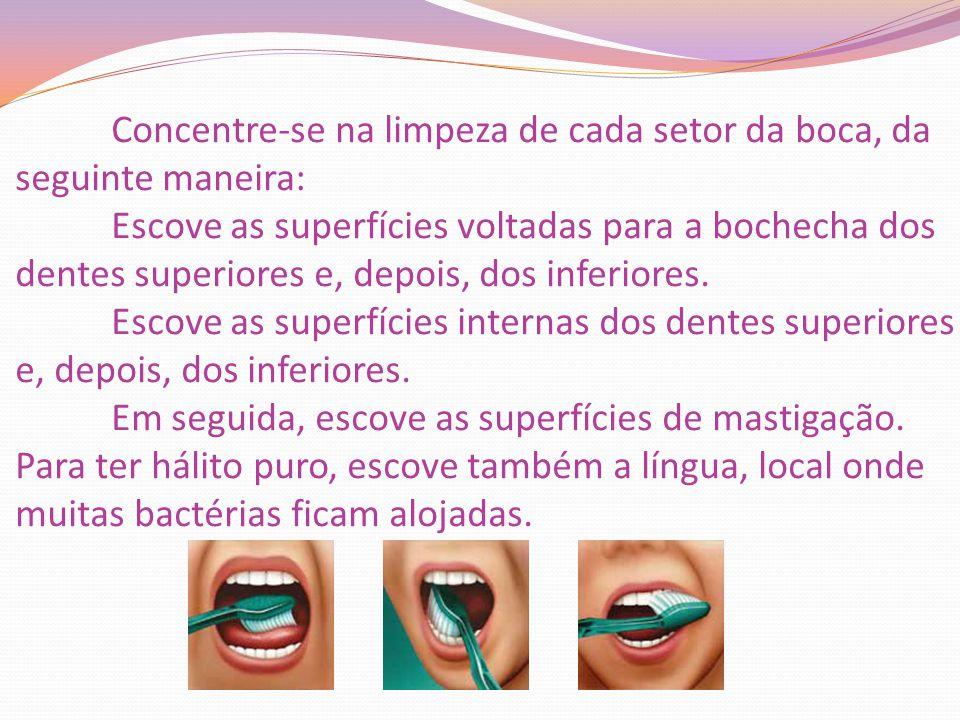Concentre-se na limpeza de cada setor da boca, da seguinte maneira: Escove as superfícies voltadas para a bochecha dos dentes superiores e, depois, do
