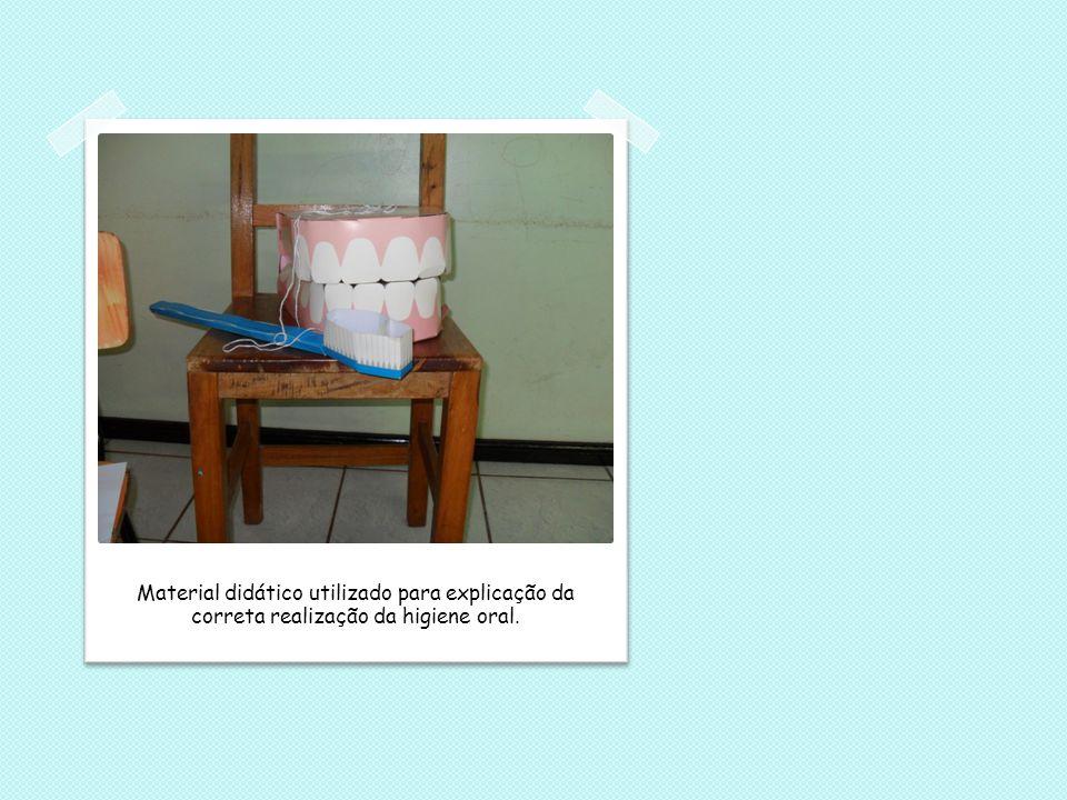 Material didático utilizado para explicação da correta realização da higiene oral.