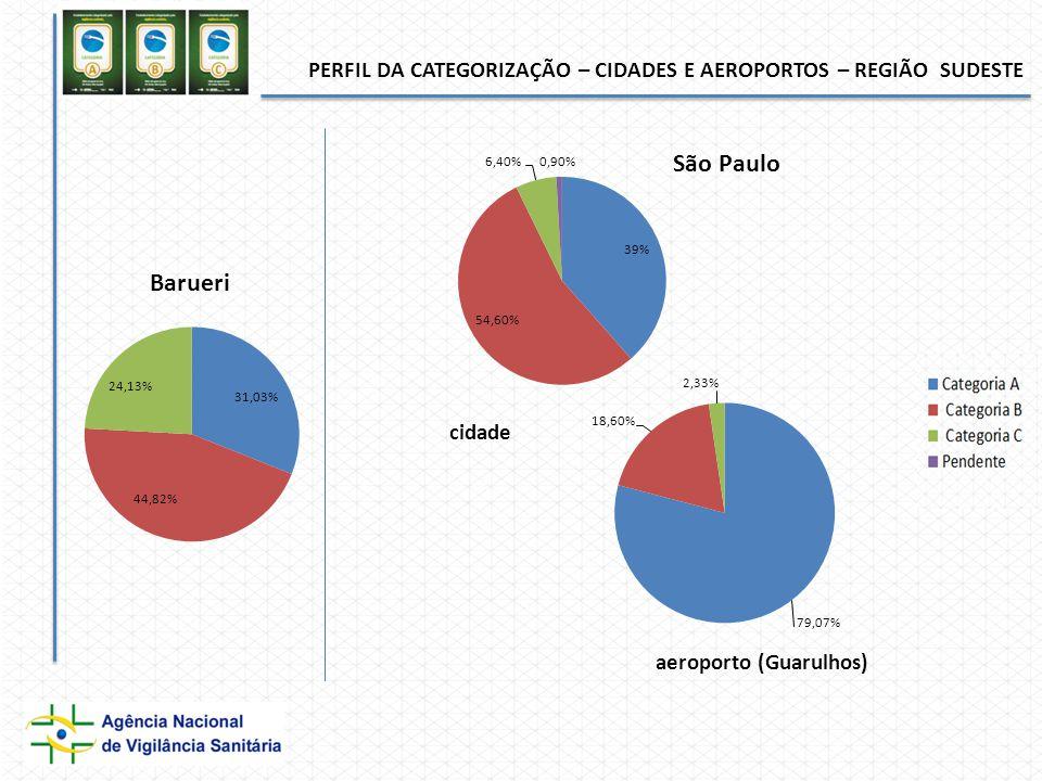 PERFIL DA CATEGORIZAÇÃO – CIDADES E AEROPORTOS – REGIÃO SUDESTE cidade aeroporto (Guarulhos)