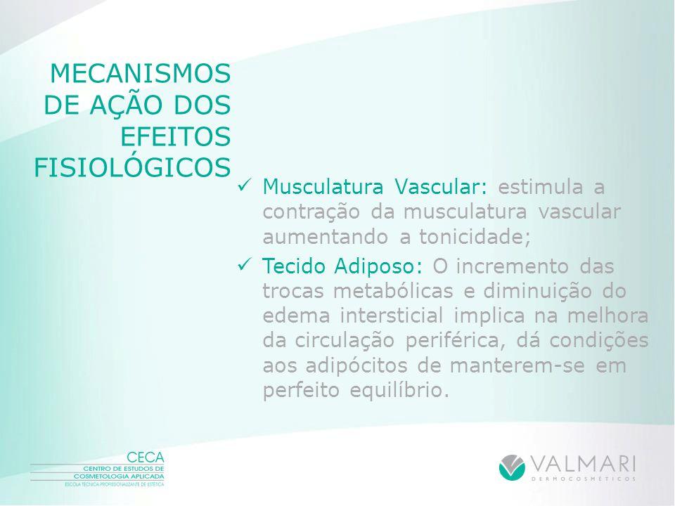 MECANISMOS DE AÇÃO DOS EFEITOS FISIOLÓGICOS Musculatura Vascular: estimula a contração da musculatura vascular aumentando a tonicidade; Tecido Adiposo