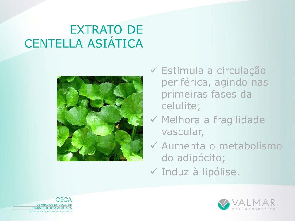 EXTRATO DE CENTELLA ASIÁTICA Estimula a circulação periférica, agindo nas primeiras fases da celulite; Melhora a fragilidade vascular, Aumenta o metab