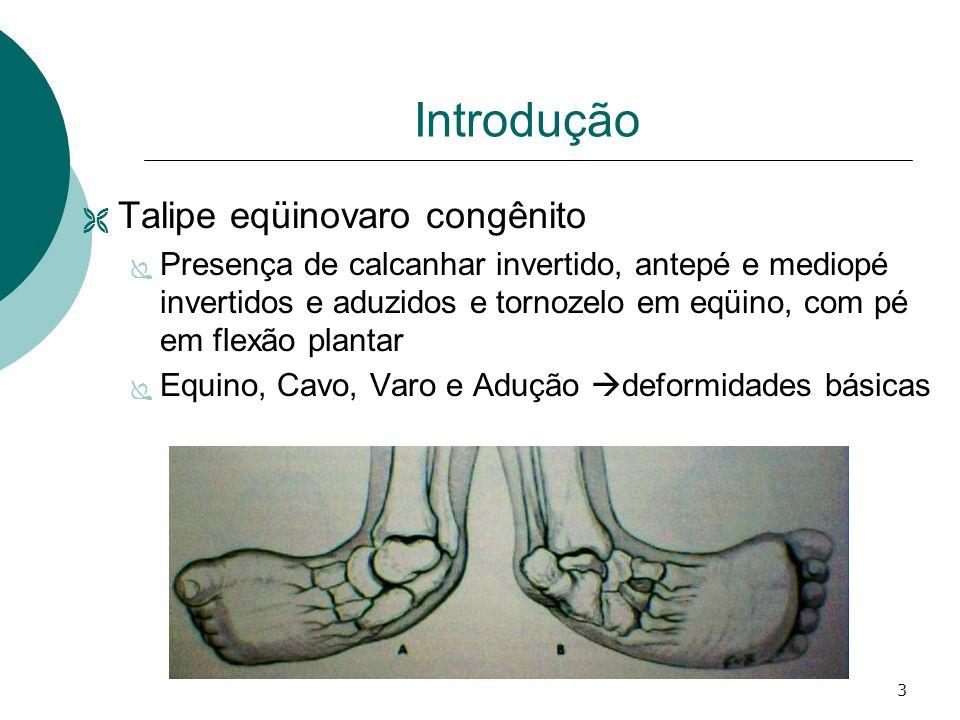 3 Introdução  Talipe eqüinovaro congênito  Presença de calcanhar invertido, antepé e mediopé invertidos e aduzidos e tornozelo em eqüino, com pé em