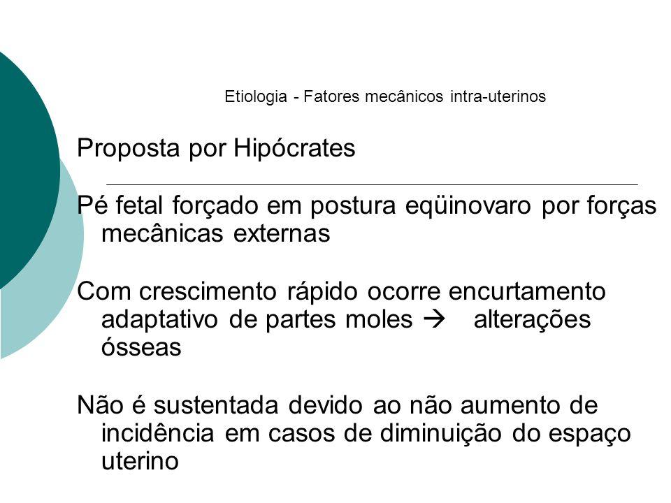 Etiologia - Fatores mecânicos intra-uterinos Proposta por Hipócrates Pé fetal forçado em postura eqüinovaro por forças mecânicas externas Com crescime