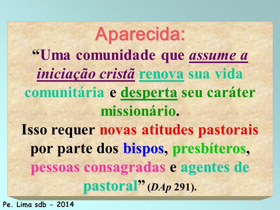 100 Aparecida: renova desperta Uma comunidade que assume a iniciação cristã renova sua vida comunitária e desperta seu caráter missionário.