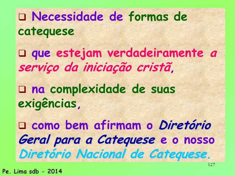 127  Necessidade de formas de catequese  que estejam verdadeiramente a serviço da iniciação cristã,  na complexidade de suas exigências, Diretório Geral para a Catequese Diretório Nacional de Catequese.
