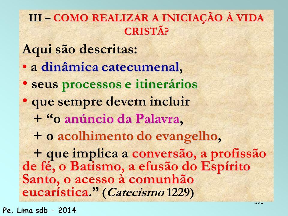 132 III – COMO REALIZAR A INICIAÇÃO À VIDA CRISTÃ.