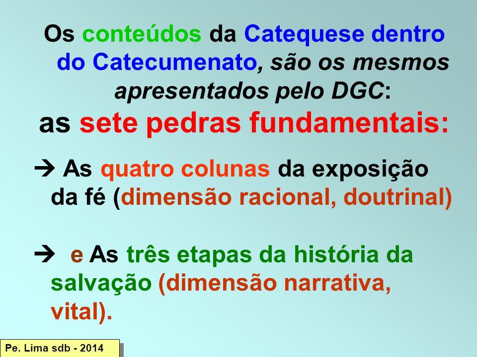 Os conteúdos da Catequese dentro do Catecumenato, são os mesmos apresentados pelo DGC: as sete pedras fundamentais:  As quatro colunas da exposição da fé (dimensão racional, doutrinal)  e As três etapas da história da salvação (dimensão narrativa, vital).