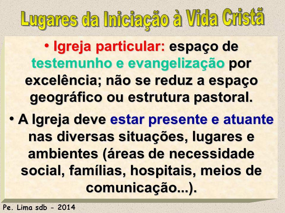 178 Igreja particular: espaço de testemunho e evangelização por excelência; não se reduz a espaço geográfico ou estrutura pastoral.