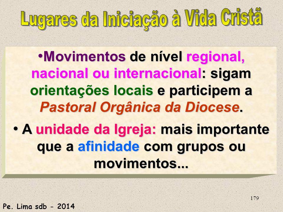 179 Movimentos de nível regional, nacional ou internacional: sigam orientações locais e participem a Pastoral Orgânica da Diocese.