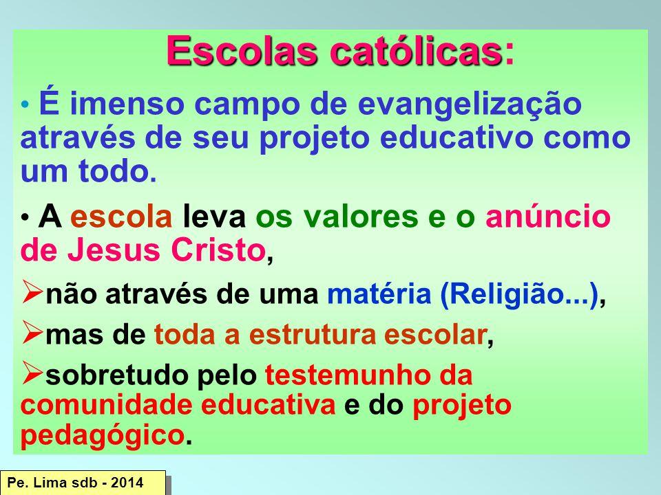 Escolas católicas Escolas católicas: É imenso campo de evangelização através de seu projeto educativo como um todo.
