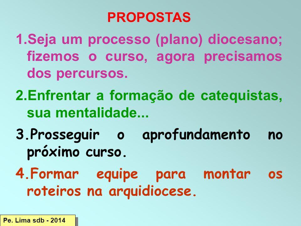 PROPOSTAS 1.Seja um processo (plano) diocesano; fizemos o curso, agora precisamos dos percursos.