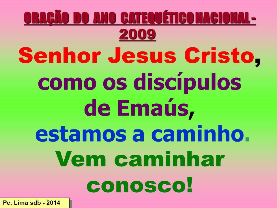 ORAÇÃO DO ANO CATEQUÉTICO NACIONAL - 2009 ORAÇÃO DO ANO CATEQUÉTICO NACIONAL - 2009 Senhor Jesus Cristo, como os discípulos de Emaús, estamos a caminho.