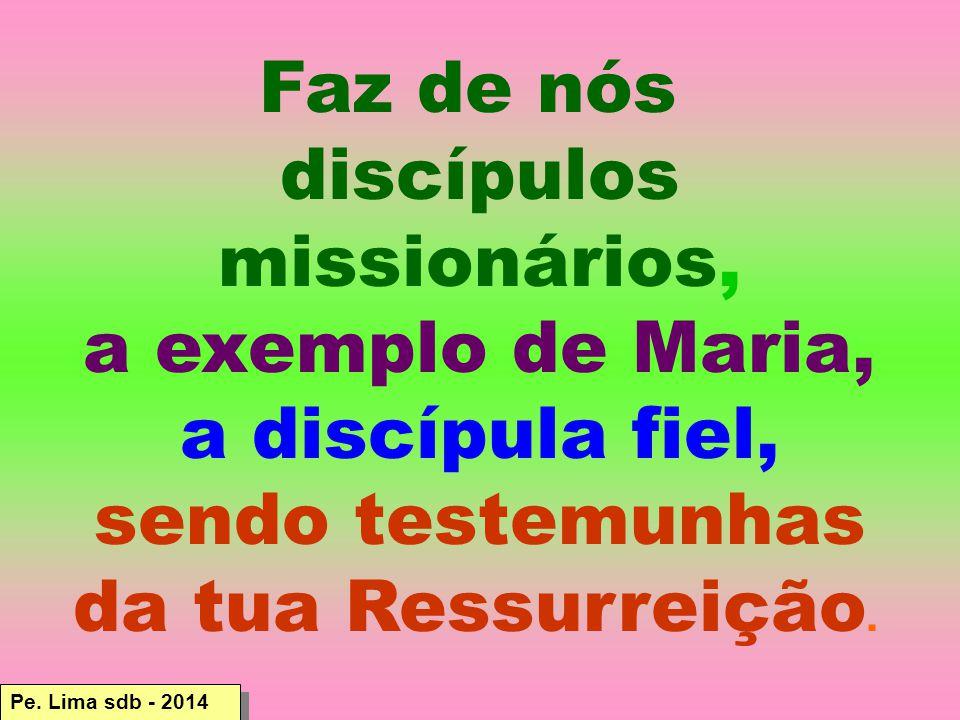 Pe. Lima sdb - 2014 Faz de nós discípulos missionários, a exemplo de Maria, a discípula fiel, sendo testemunhas da tua Ressurreição.