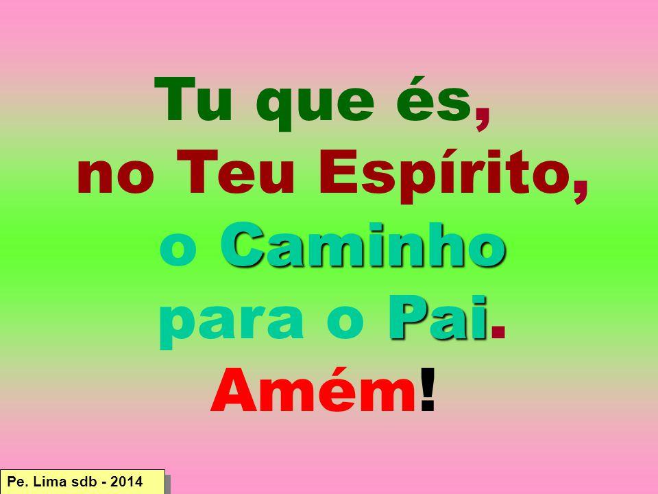 Pe. Lima sdb - 2014 Tu que és, no Teu Espírito, Caminho o Caminho Pai para o Pai. Amém!