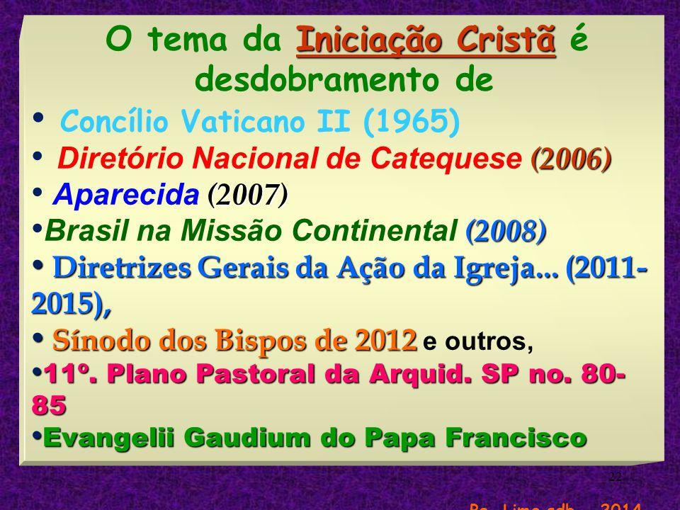 22 Iniciação Cristã O tema da Iniciação Cristã é desdobramento de Concílio Vaticano II (1965) (2006) Diretório Nacional de Catequese (2006) (2007) Aparecida (2007) (2008) Brasil na Missão Continental (2008) Diretrizes Gerais da Ação da Igreja...