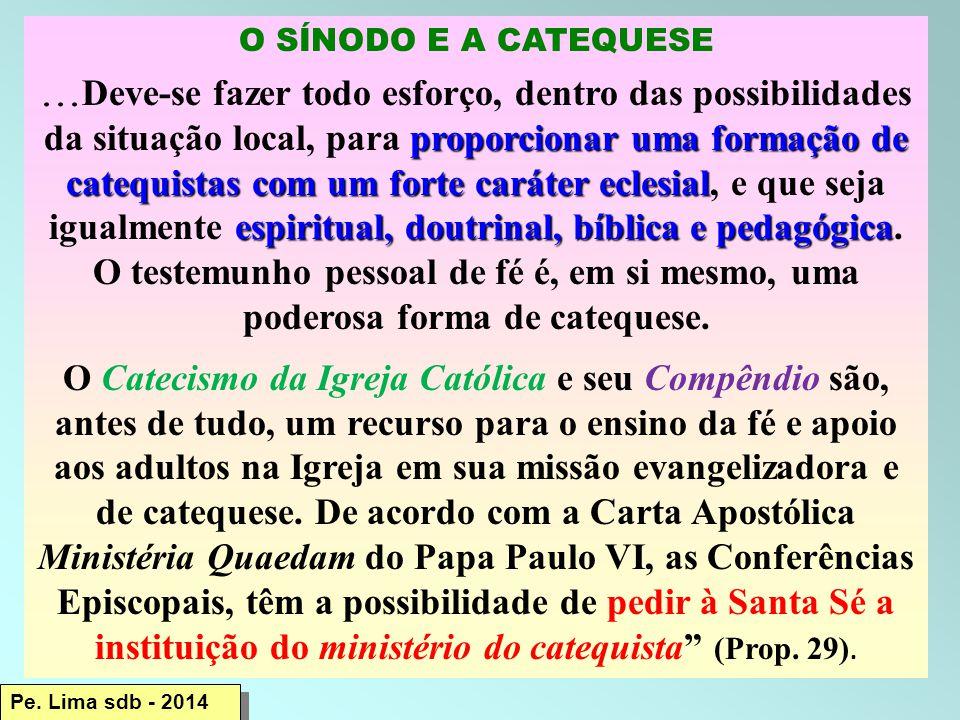O SÍNODO E A CATEQUESE proporcionar uma formação de catequistas com um forte caráter eclesial espiritual, doutrinal, bíblica e pedagógica...