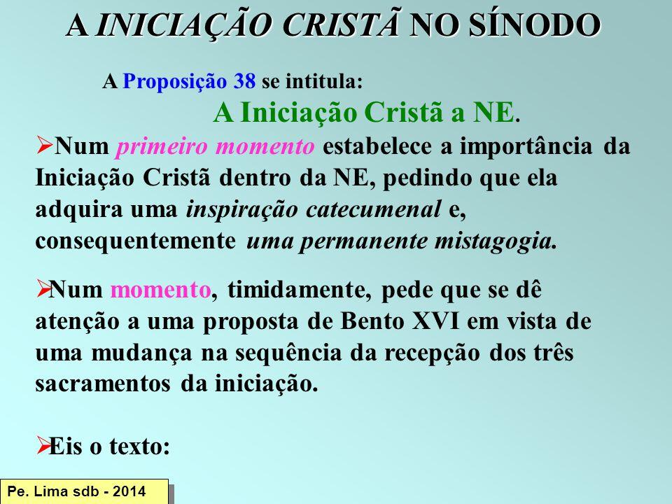 A INICIAÇÃO CRISTÃ NO SÍNODO A Proposição 38 se intitula: A Iniciação Cristã a NE.