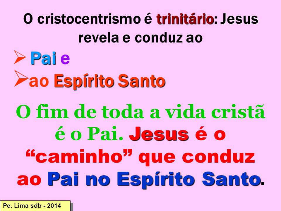 trinitárioJesus O cristocentrismo é trinitário: Jesus revela e conduz ao Pai  Pai e Espírito Santo  ao Espírito Santo Jesus Pai no Espírito Santo O fim de toda a vida cristã é o Pai.