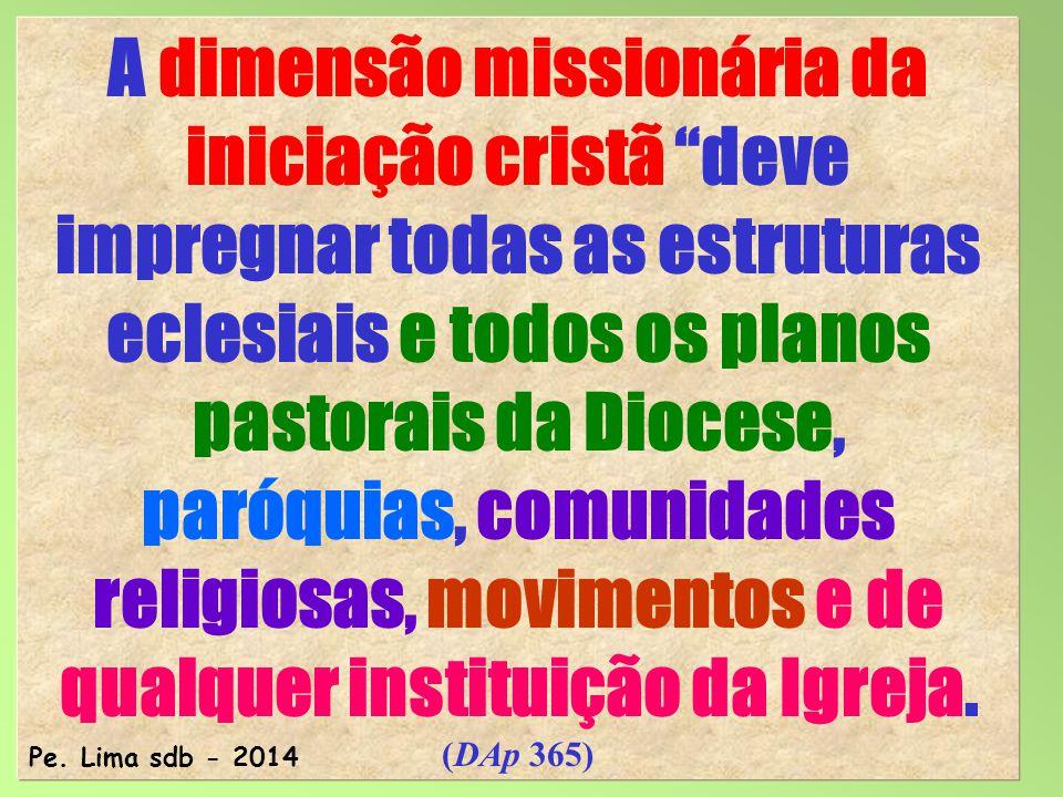 77 A dimensão missionária da iniciação cristã deve impregnar todas as estruturas eclesiais e todos os planos pastorais da Diocese, paróquias, comunidades religiosas, movimentos e de qualquer instituição da Igreja.