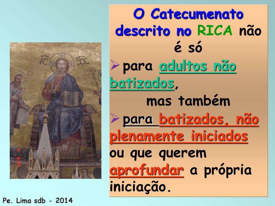 80 O Catecumenato descrito no O Catecumenato descrito no RICA não é só adultos não batizados  para adultos não batizados, mas também para batizados, não plenamente iniciados aprofundar  para batizados, não plenamente iniciados ou que querem aprofundar a própria iniciação.