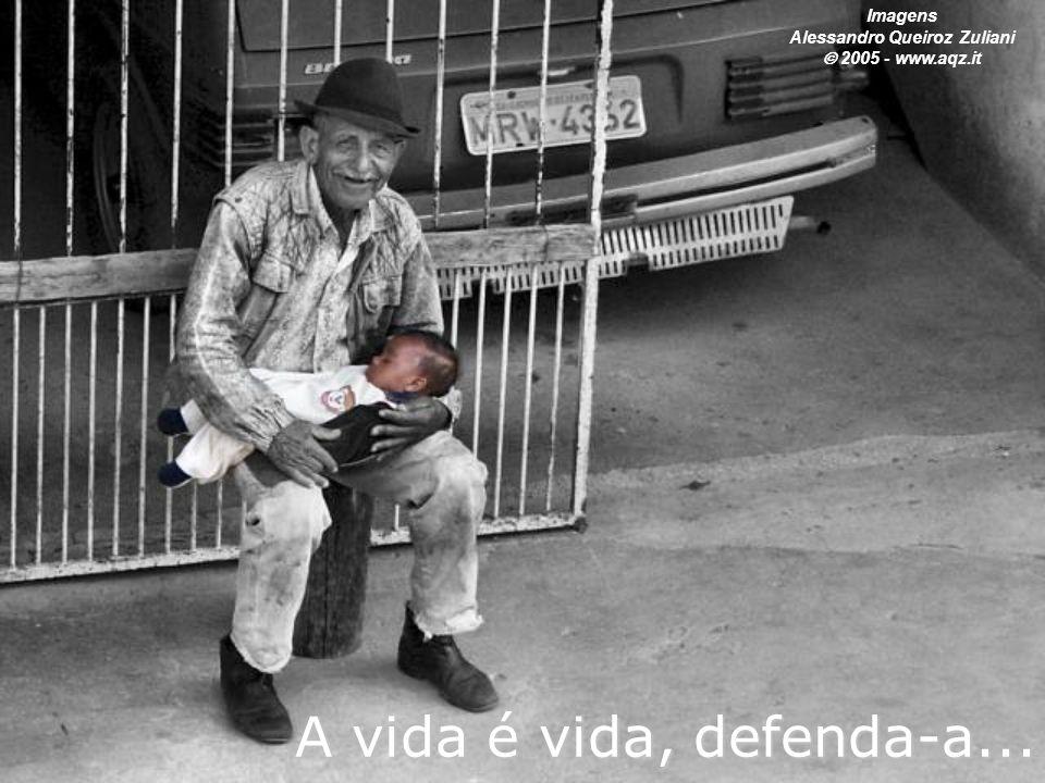 A vida é vida, defenda-a... Imagens Alessandro Queiroz Zuliani  2005 - www.aqz.it