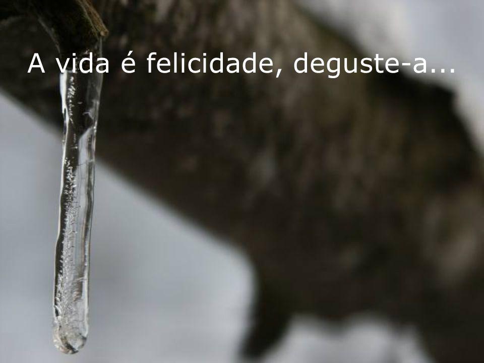 A vida é felicidade, deguste-a...
