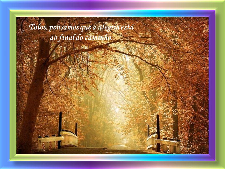 A vida é assim: a gente escolhe um caminho na esperança de que ele vá nos conduzir a um lugar de alegria.