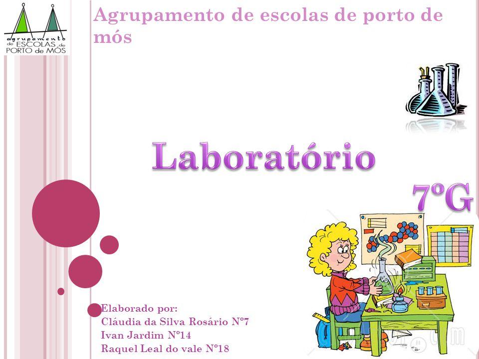 Elaborado por: Cláudia da Silva Rosário Nº7 Ivan Jardim Nº14 Raquel Leal do vale Nº18 Agrupamento de escolas de porto de mós