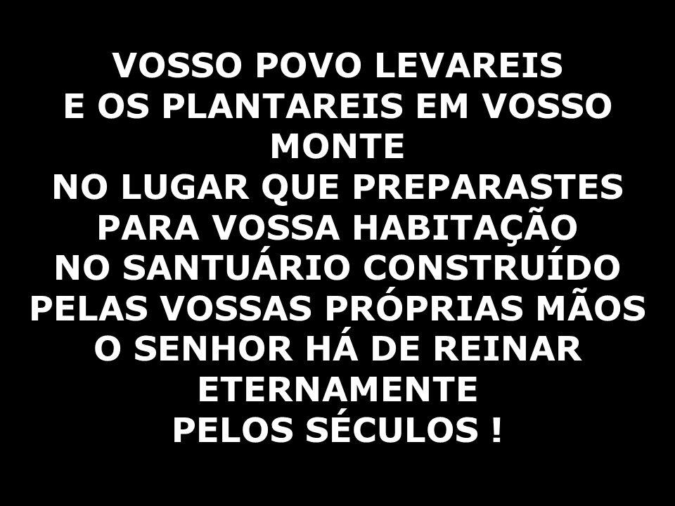 VOSSO POVO LEVAREIS E OS PLANTAREIS EM VOSSO MONTE NO LUGAR QUE PREPARASTES PARA VOSSA HABITAÇÃO NO SANTUÁRIO CONSTRUÍDO PELAS VOSSAS PRÓPRIAS MÃOS O SENHOR HÁ DE REINAR ETERNAMENTE PELOS SÉCULOS !