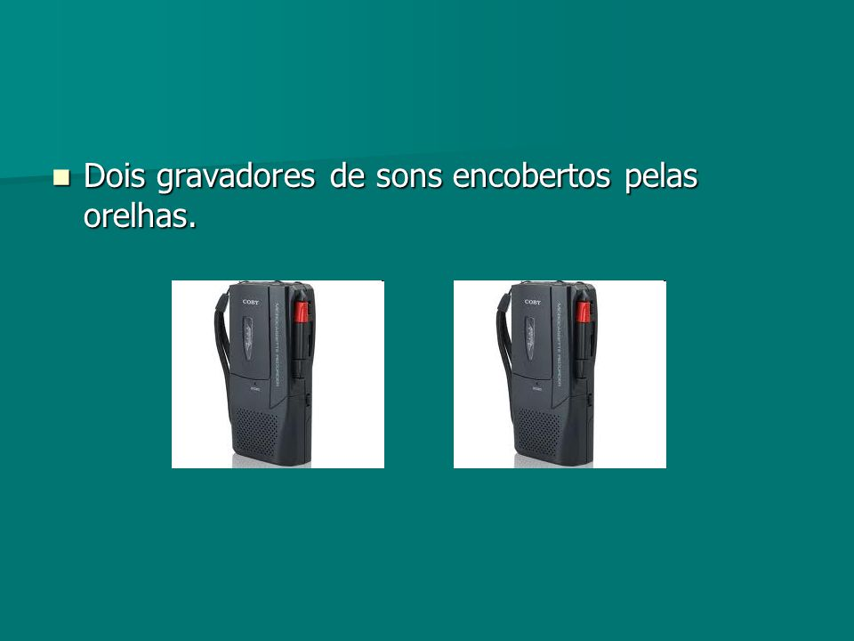 Dois gravadores de sons encobertos pelas orelhas. Dois gravadores de sons encobertos pelas orelhas.