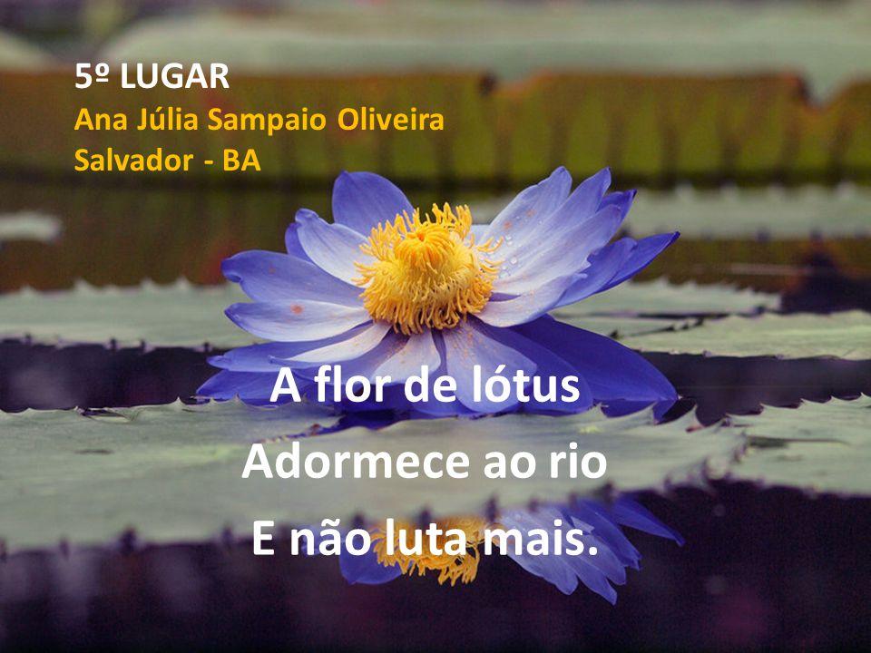 5º LUGAR Ana Júlia Sampaio Oliveira Salvador - BA A flor de lótus Adormece ao rio E não luta mais.