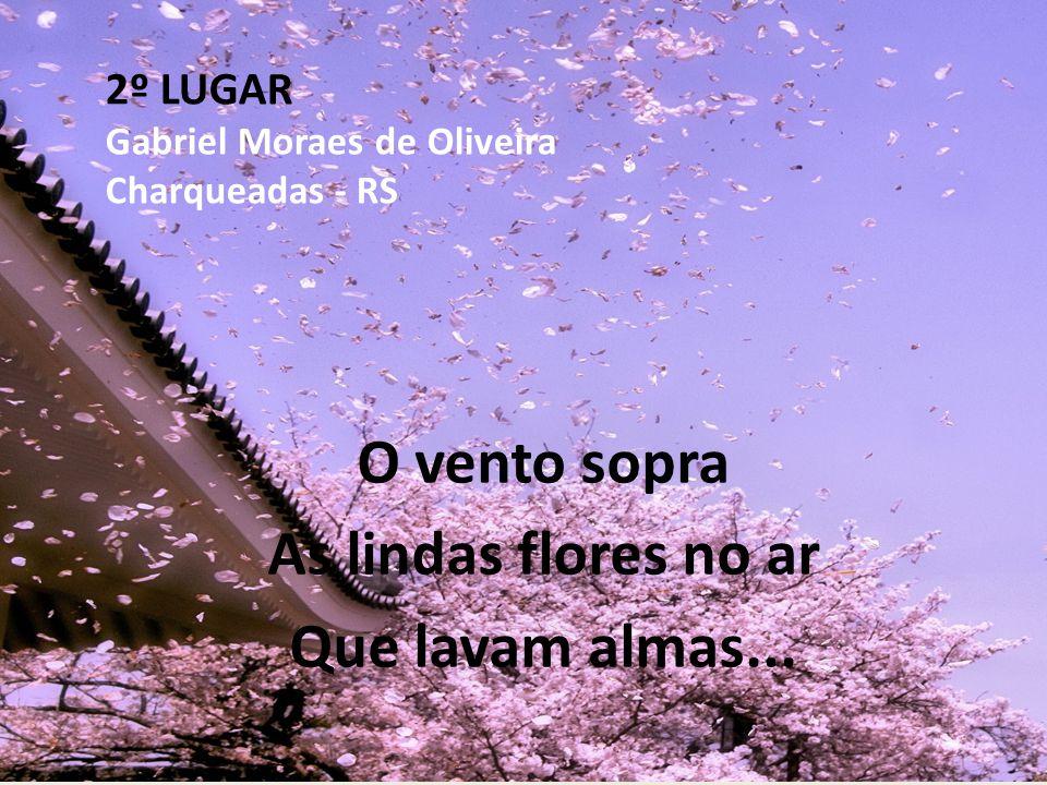 2º LUGAR Gabriel Moraes de Oliveira Charqueadas - RS O vento sopra As lindas flores no ar Que lavam almas...