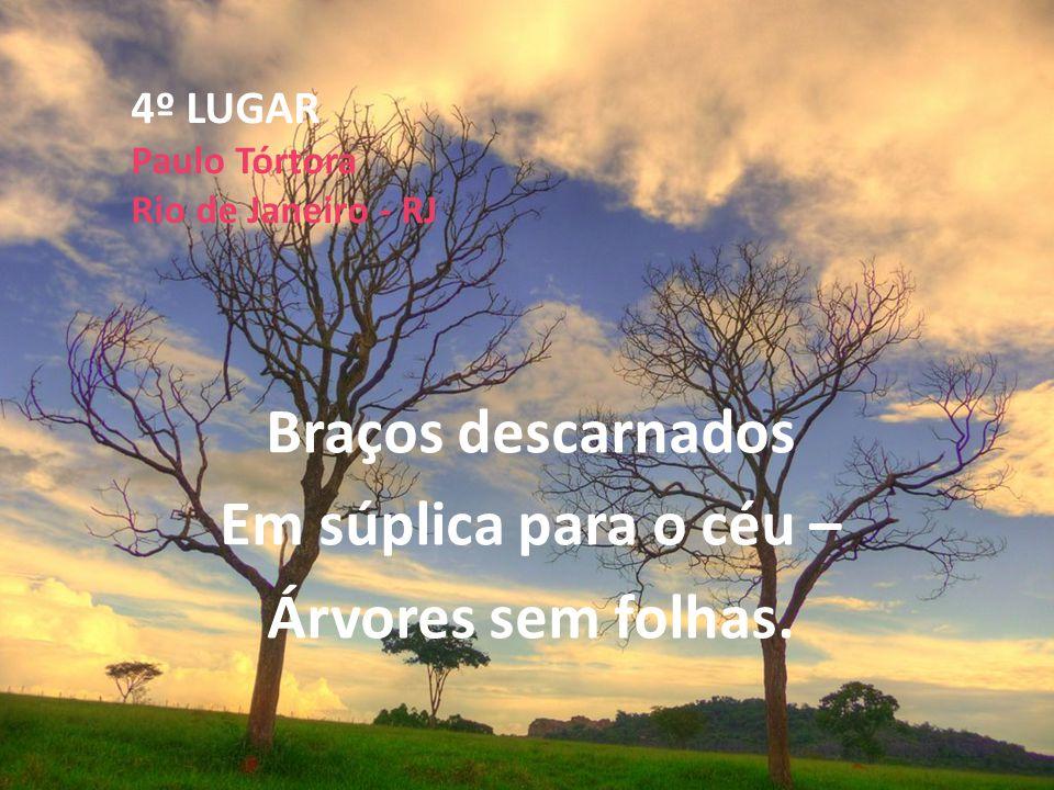 4º LUGAR Paulo Tórtora Rio de Janeiro - RJ Braços descarnados Em súplica para o céu – Árvores sem folhas.