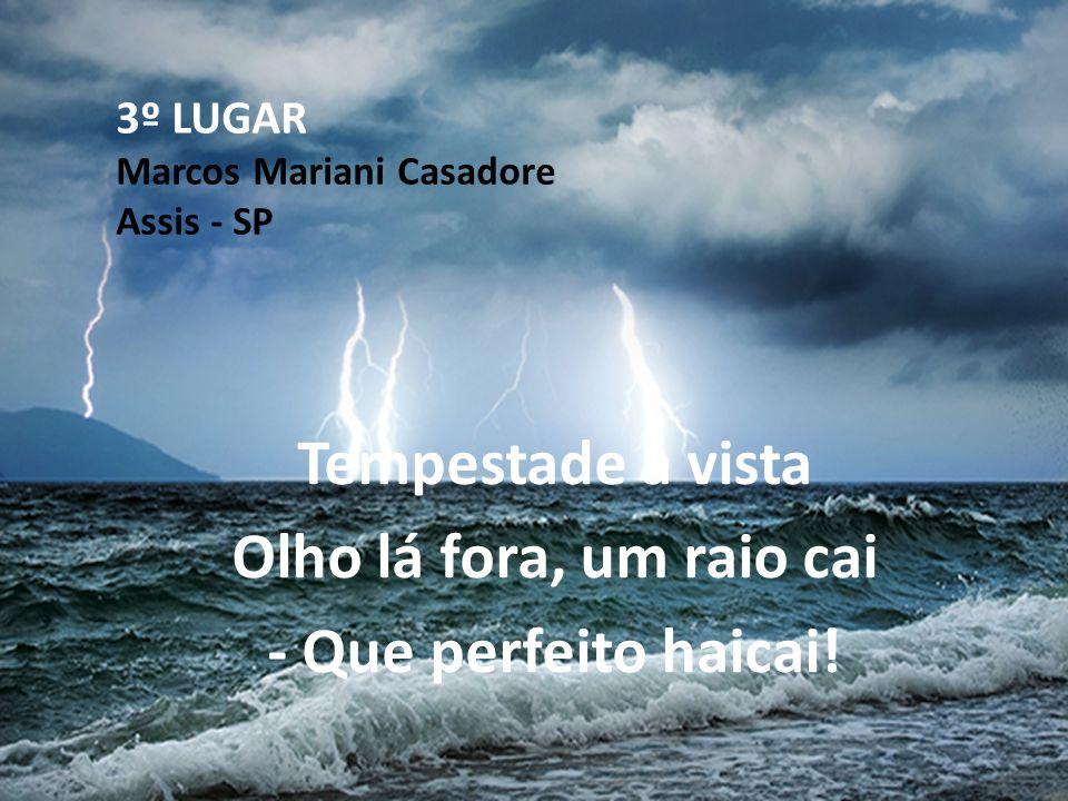 3º LUGAR Marcos Mariani Casadore Assis - SP Tempestade à vista Olho lá fora, um raio cai - Que perfeito haicai!