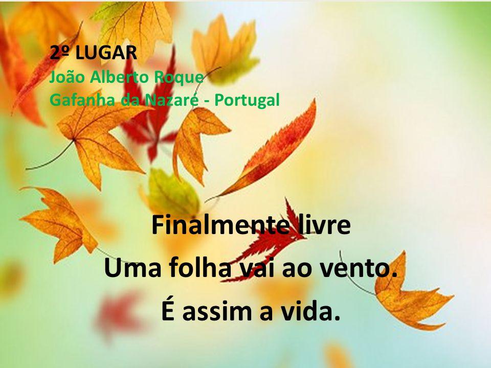 2º LUGAR João Alberto Roque Gafanha da Nazaré - Portugal Finalmente livre Uma folha vai ao vento. É assim a vida.