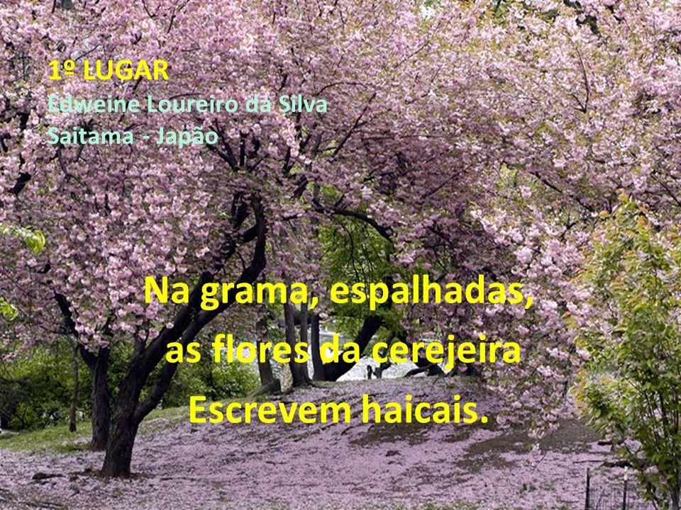 1º LUGAR Edweine Loureiro da Silva Saitama - Japão Na grama, espalhadas, as flores da cerejeira Escrevem haicais.