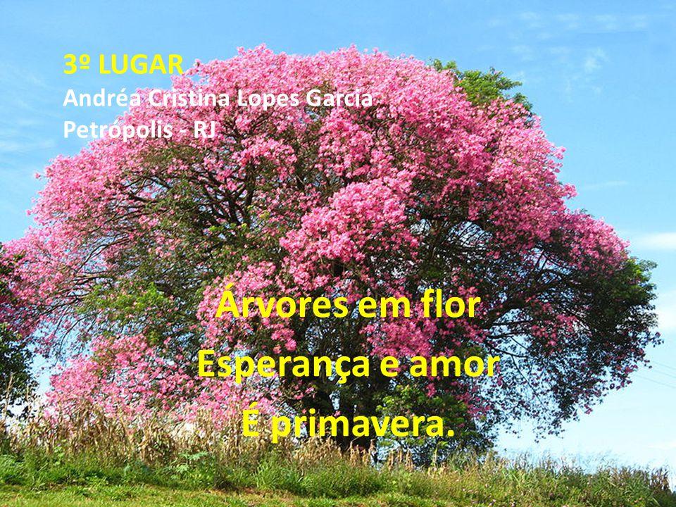 3º LUGAR Andréa Cristina Lopes Garcia Petrópolis - RJ Árvores em flor Esperança e amor É primavera.