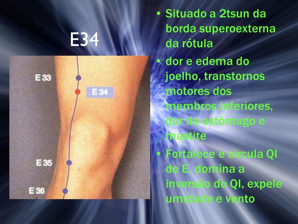E34 Situado a 2tsun da borda superoexterna da rótula dor e edema do joelho, transtornos motores dos membros inferiores, dor de estômago e mastite Fort