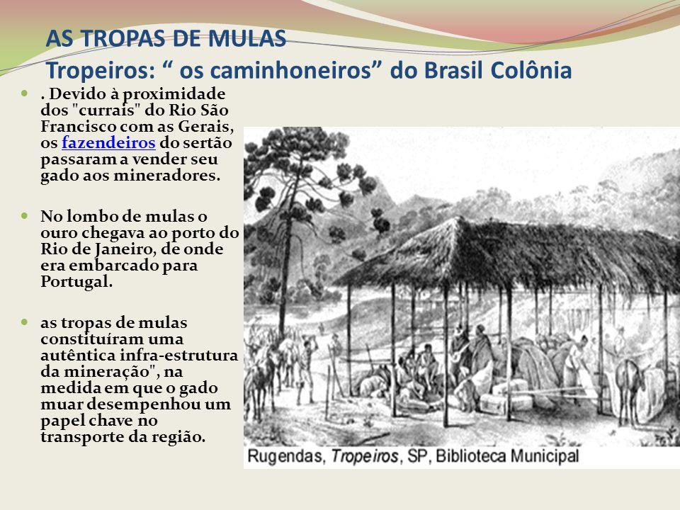 """AS TROPAS DE MULAS Tropeiros: """" os caminhoneiros"""" do Brasil Colônia. Devido à proximidade dos"""