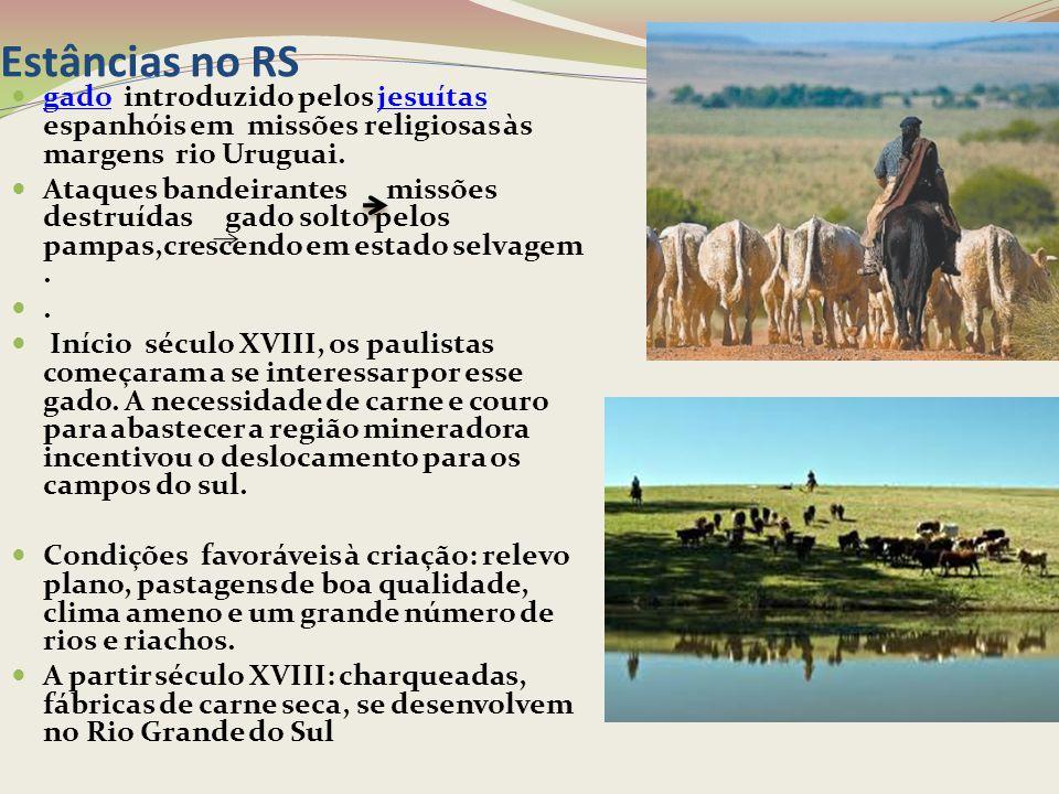 Estâncias no RS gado introduzido pelos jesuítas espanhóis em missões religiosas às margens rio Uruguai. gadojesuítas Ataques bandeirantes missões dest