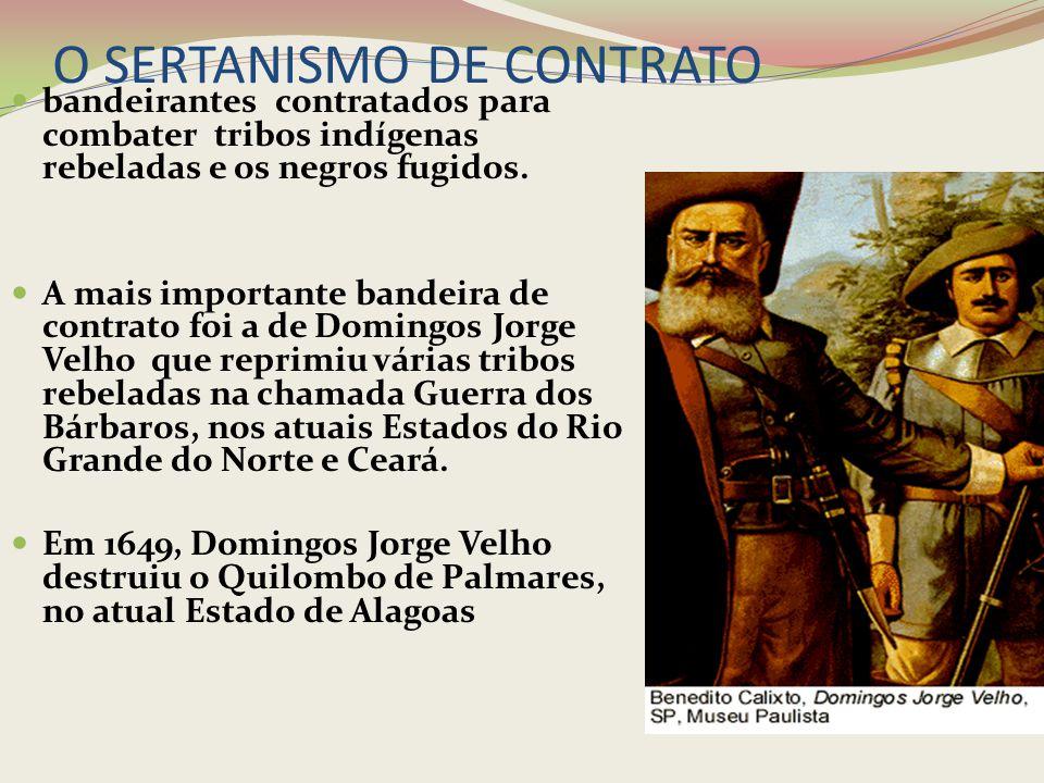 O SERTANISMO DE CONTRATO bandeirantes contratados para combater tribos indígenas rebeladas e os negros fugidos. A mais importante bandeira de contrato