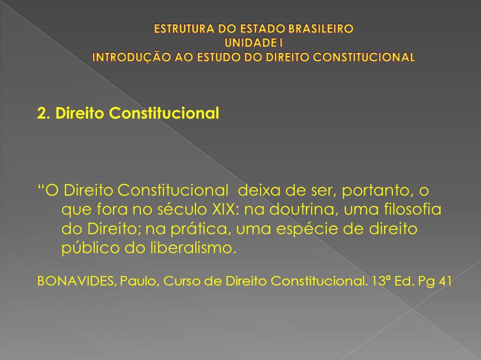 """2. Direito Constitucional """"O Direito Constitucional deixa de ser, portanto, o que fora no século XIX: na doutrina, uma filosofia do Direito; na prátic"""
