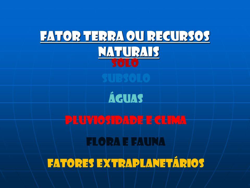 SOLO SUBSOLO ÁGUAS PLUVIOSIDADE E CLIMA FLORA E FAUNA FATORES EXTRAPLANETÁRIOS
