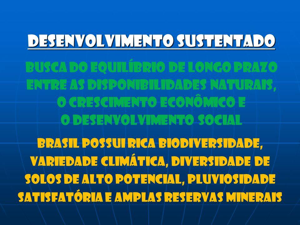 Desenvolvimento sustentado Busca do equilíbrio de longo prazo Entre as disponibilidades naturais, O crescimento econômico e O desenvolvimento social B