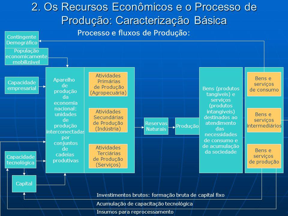 2. Os Recursos Econômicos e o Processo de Produção: Caracterização Básica Aparelho de produção da economia nacional: unidades de produção interconecta
